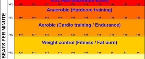 fat-burning-vs-cardio-zone-491×200